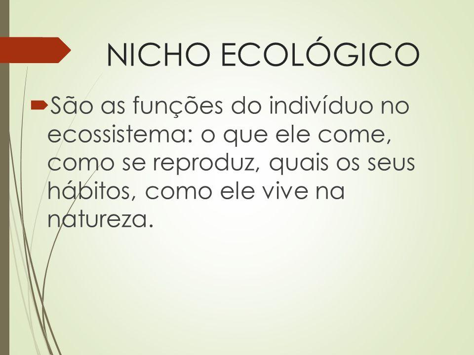 NICHO ECOLÓGICO São as funções do indivíduo no ecossistema: o que ele come, como se reproduz, quais os seus hábitos, como ele vive na natureza.