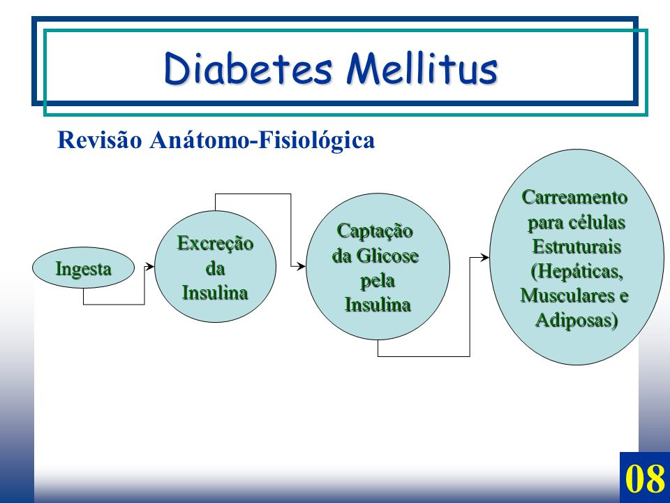 Diabetes Mellitus 08 Revisão Anátomo-Fisiológica Carreamento
