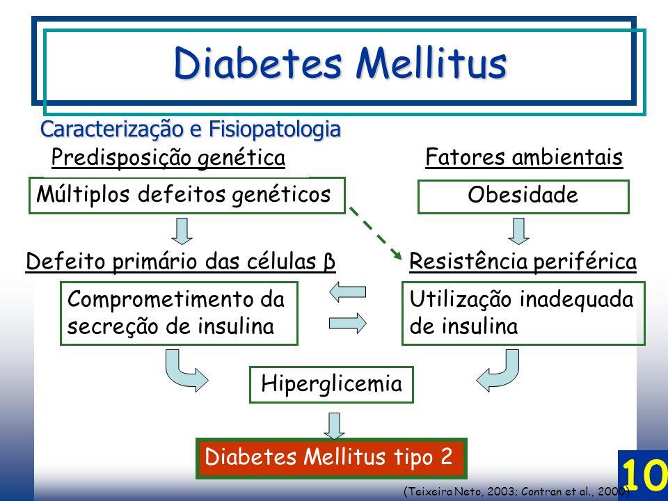 (Teixeira Neto, 2003; Contran et al., 2000)