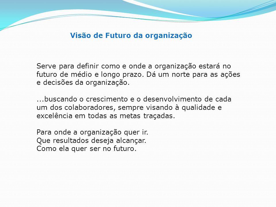 Visão de Futuro da organização