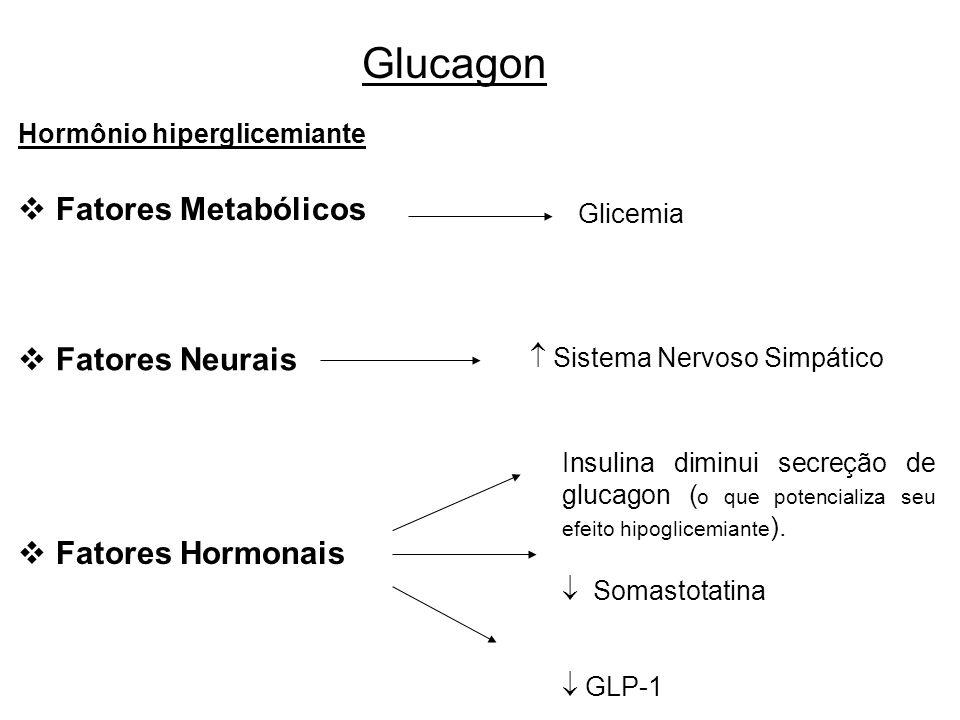 Glucagon Fatores Metabólicos Fatores Neurais Fatores Hormonais