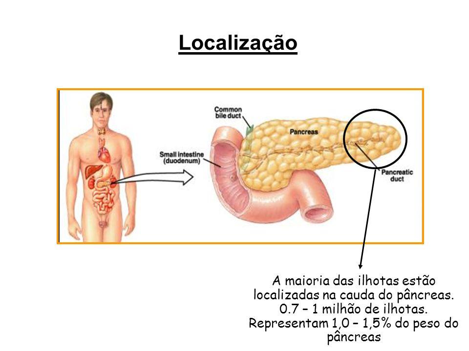 Localização A maioria das ilhotas estão localizadas na cauda do pâncreas. 0.7 – 1 milhão de ilhotas.