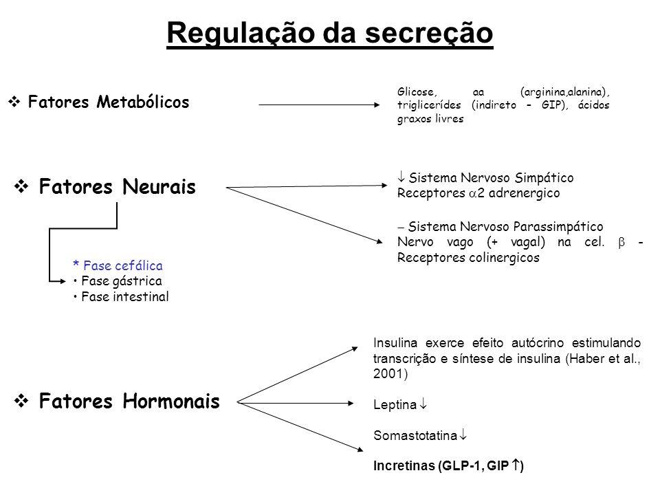 Regulação da secreção Fatores Neurais Fatores Hormonais