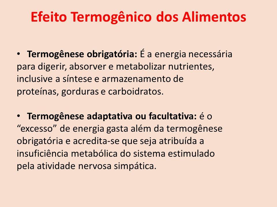 Efeito Termogênico dos Alimentos