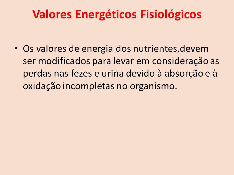 Valores Energéticos Fisiológicos