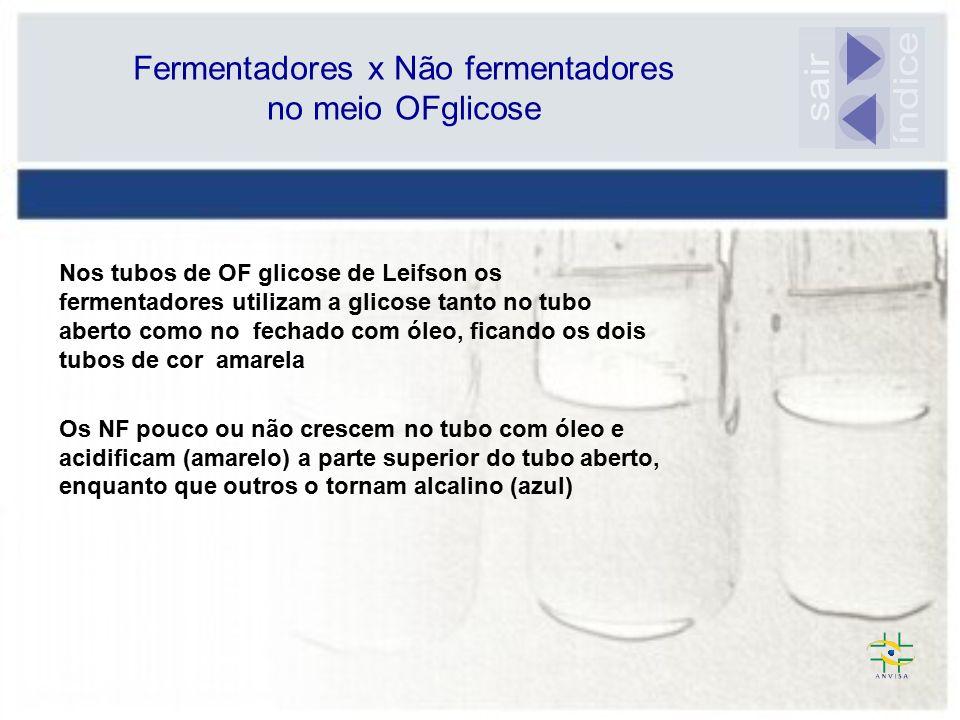 Fermentadores x Não fermentadores no meio OFglicose