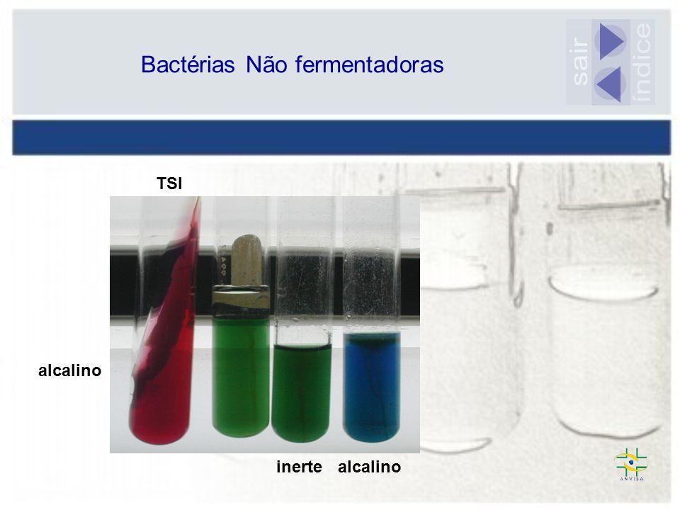 Bactérias Não fermentadoras