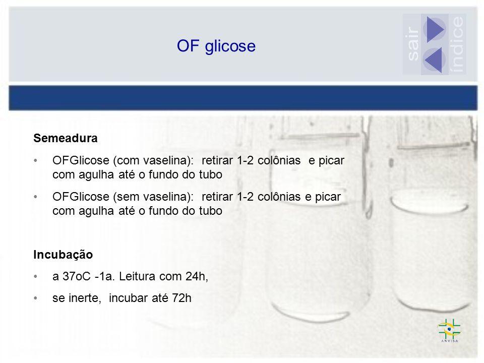 índice sair OF glicose Semeadura