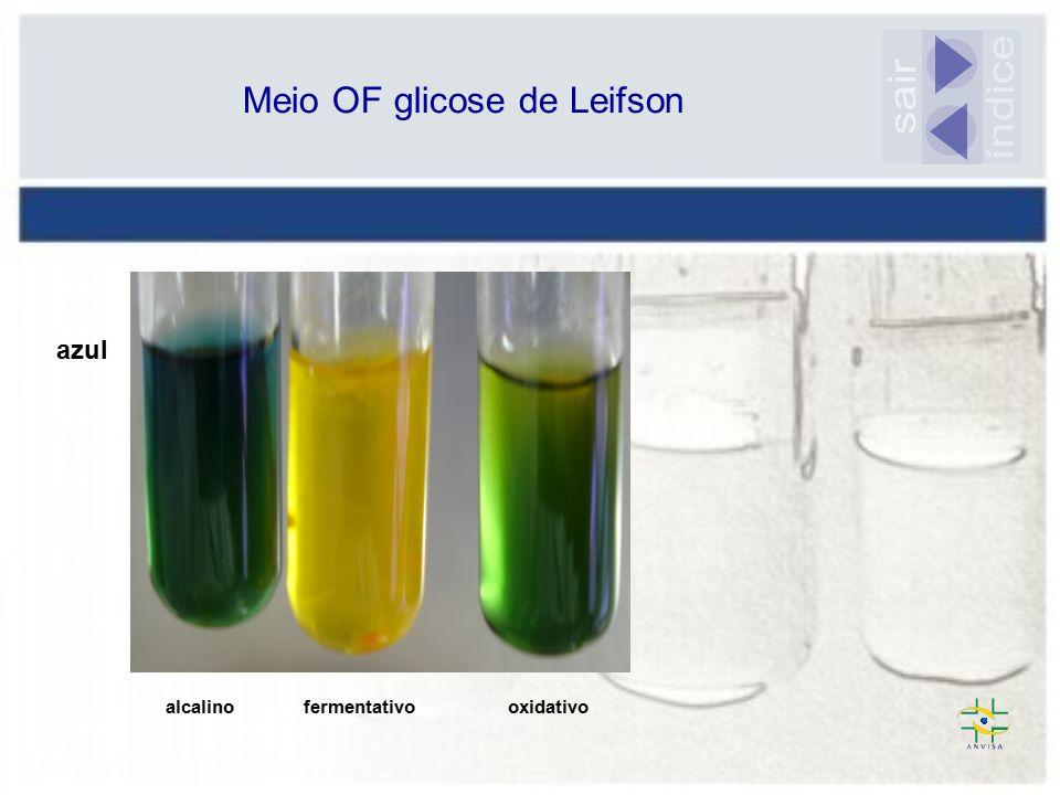 Meio OF glicose de Leifson