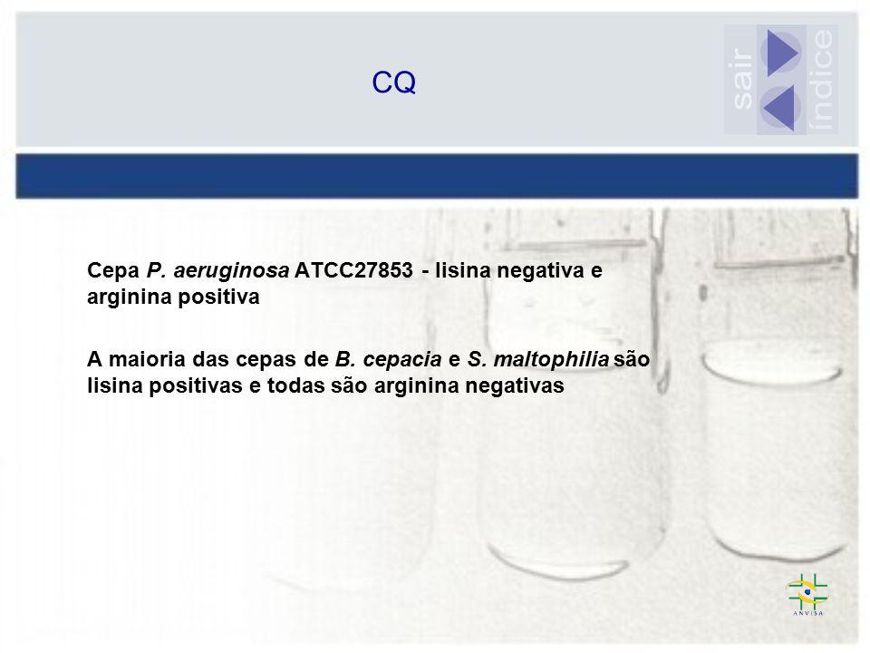 CQ sair. índice. Cepa P. aeruginosa ATCC27853 - lisina negativa e arginina positiva.