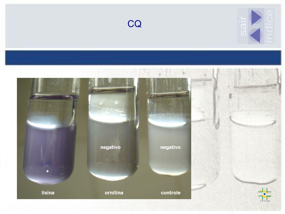 CQ sair índice negativo negativo + lisina ornitina controle