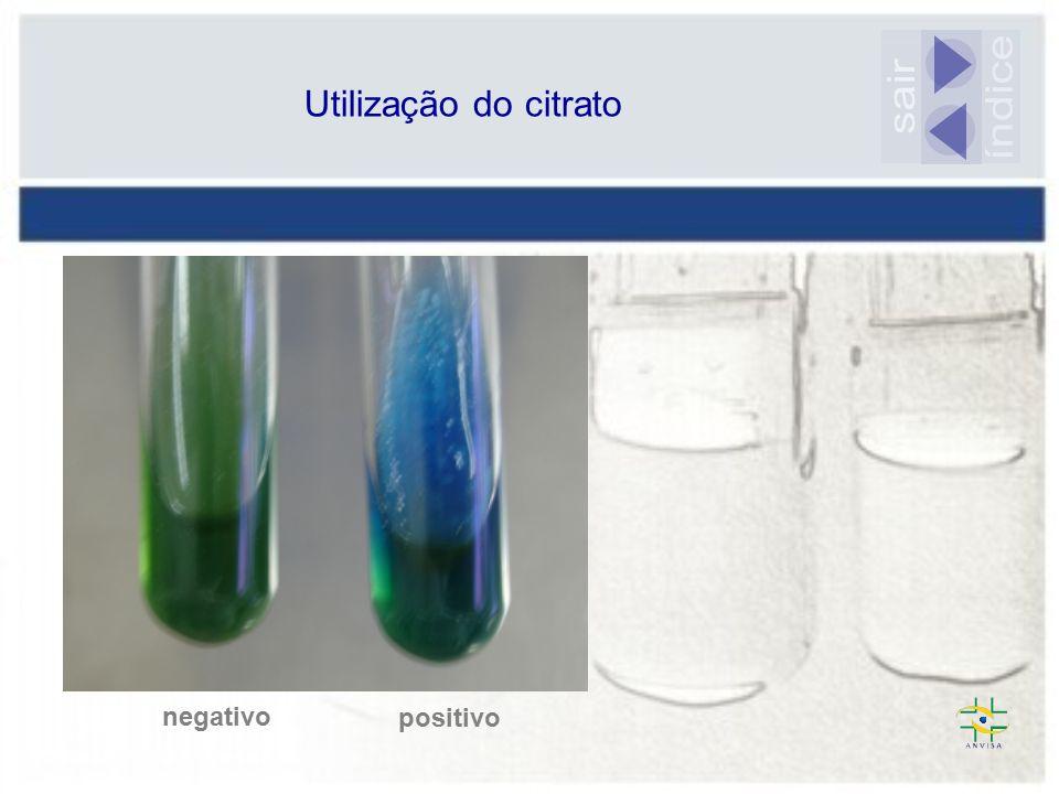 Utilização do citrato sair índice negativo positivo