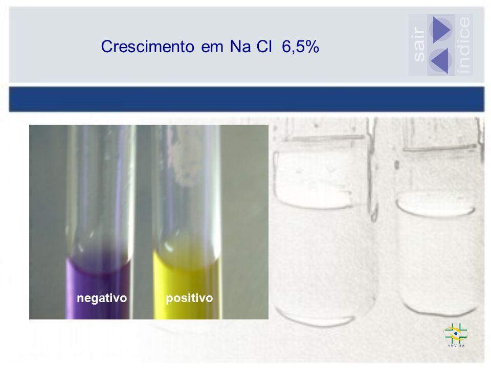 Crescimento em Na Cl 6,5% sair índice negativo positivo
