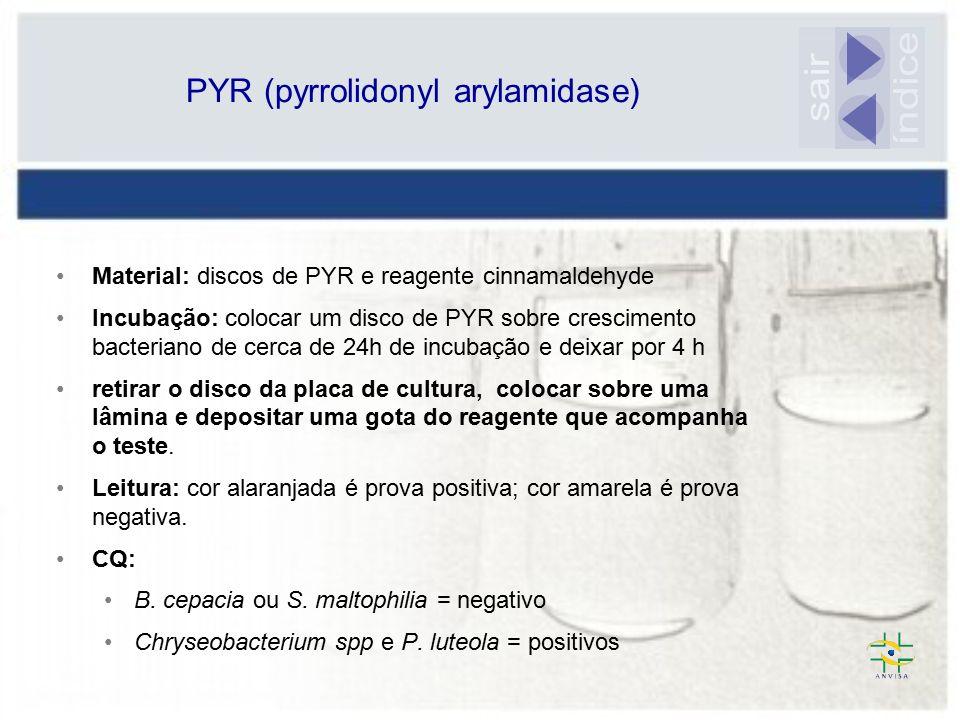 PYR (pyrrolidonyl arylamidase)