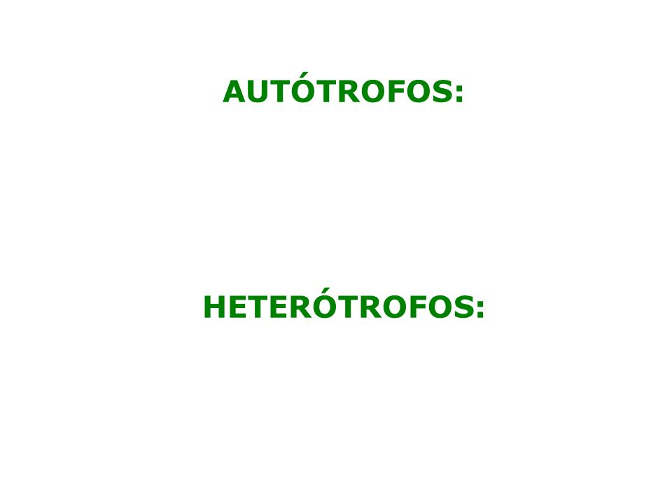 AUTÓTROFOS: HETERÓTROFOS: