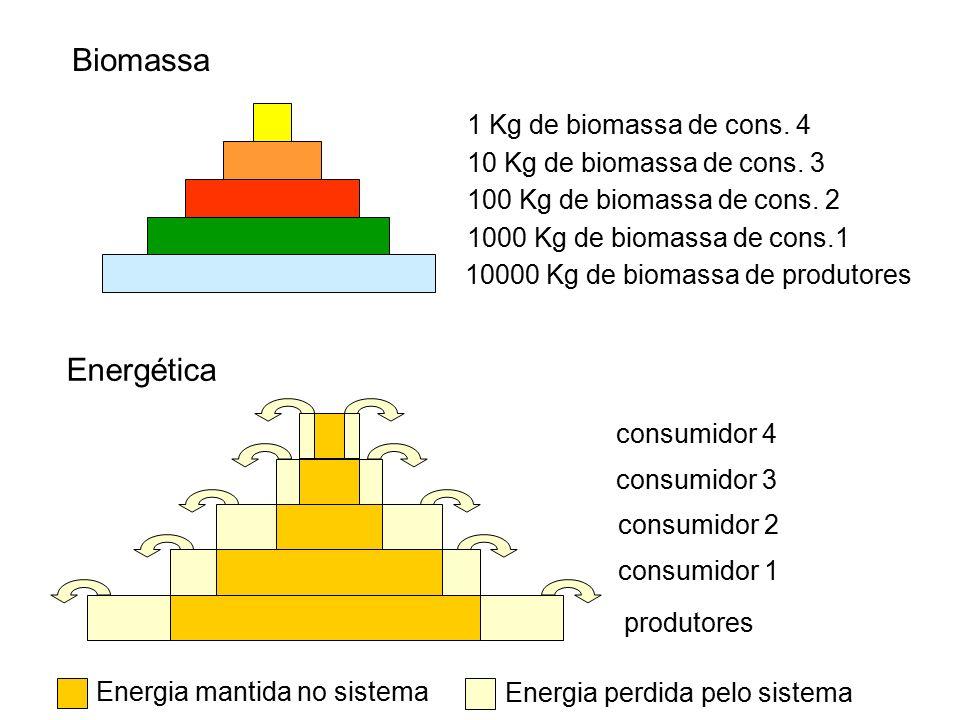 Biomassa Energética 1 Kg de biomassa de cons. 4