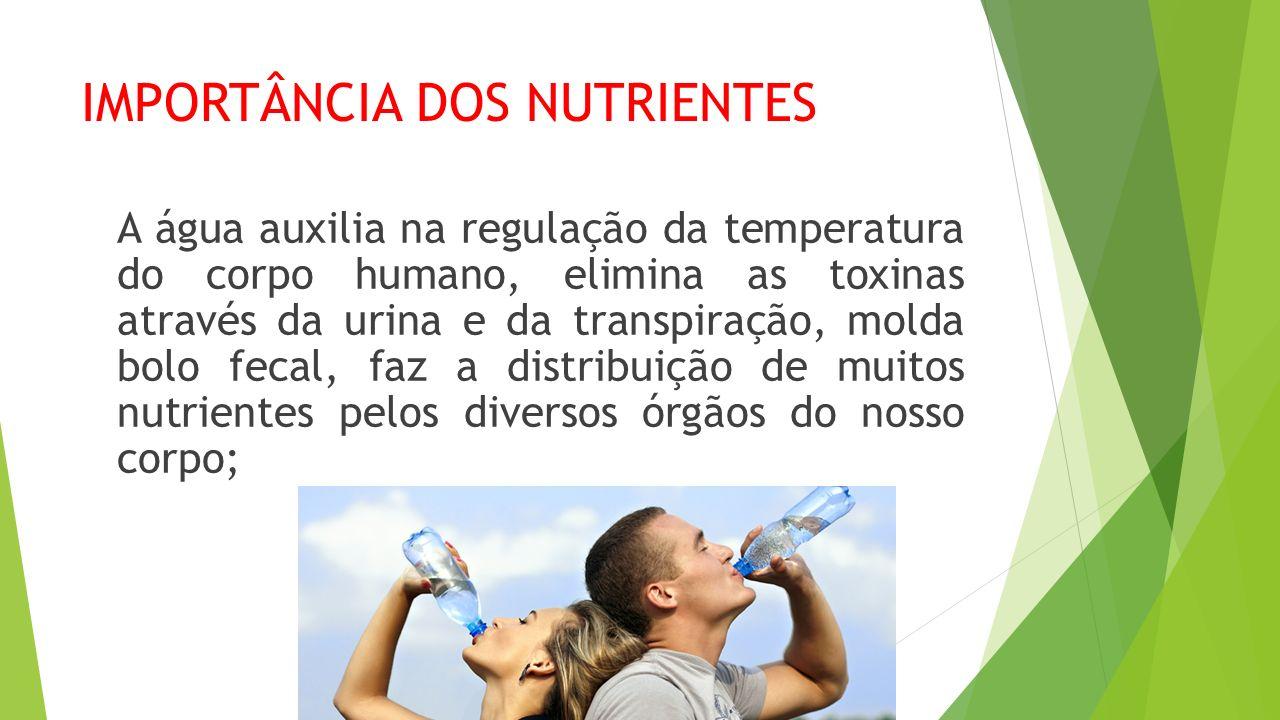 IMPORTÂNCIA DOS NUTRIENTES