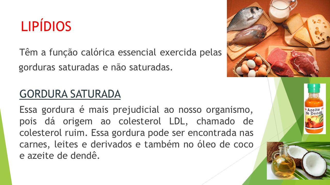 LIPÍDIOS GORDURA SATURADA gorduras saturadas e não saturadas.