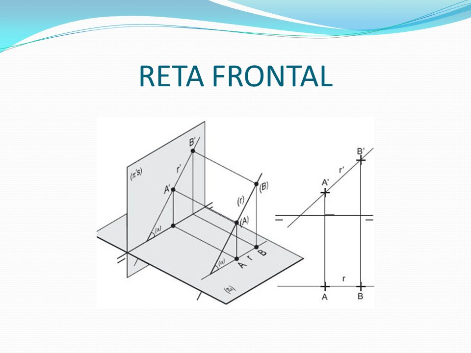 RETA FRONTAL