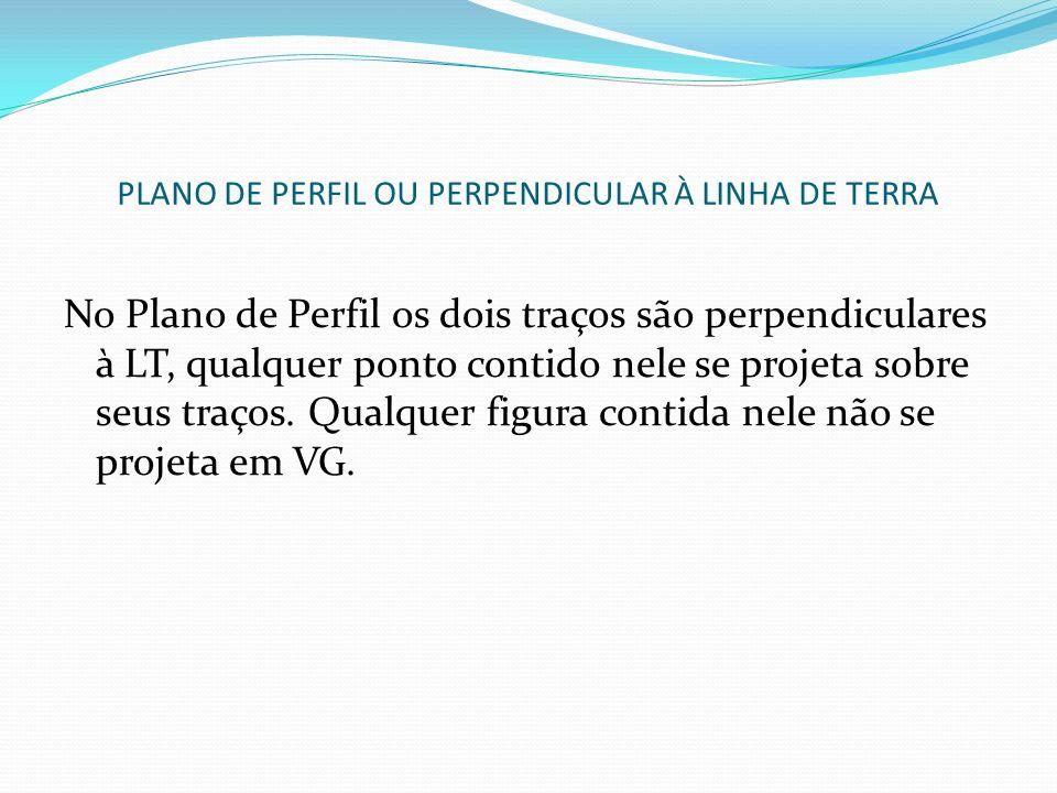 PLANO DE PERFIL OU PERPENDICULAR À LINHA DE TERRA