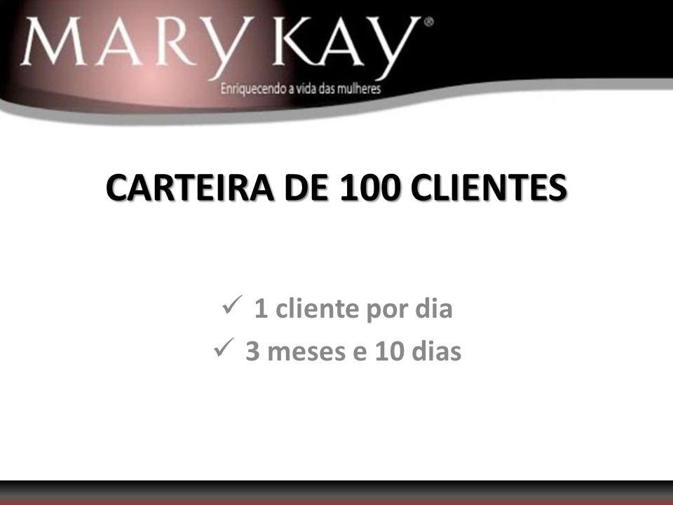 1 cliente por dia 3 meses e 10 dias