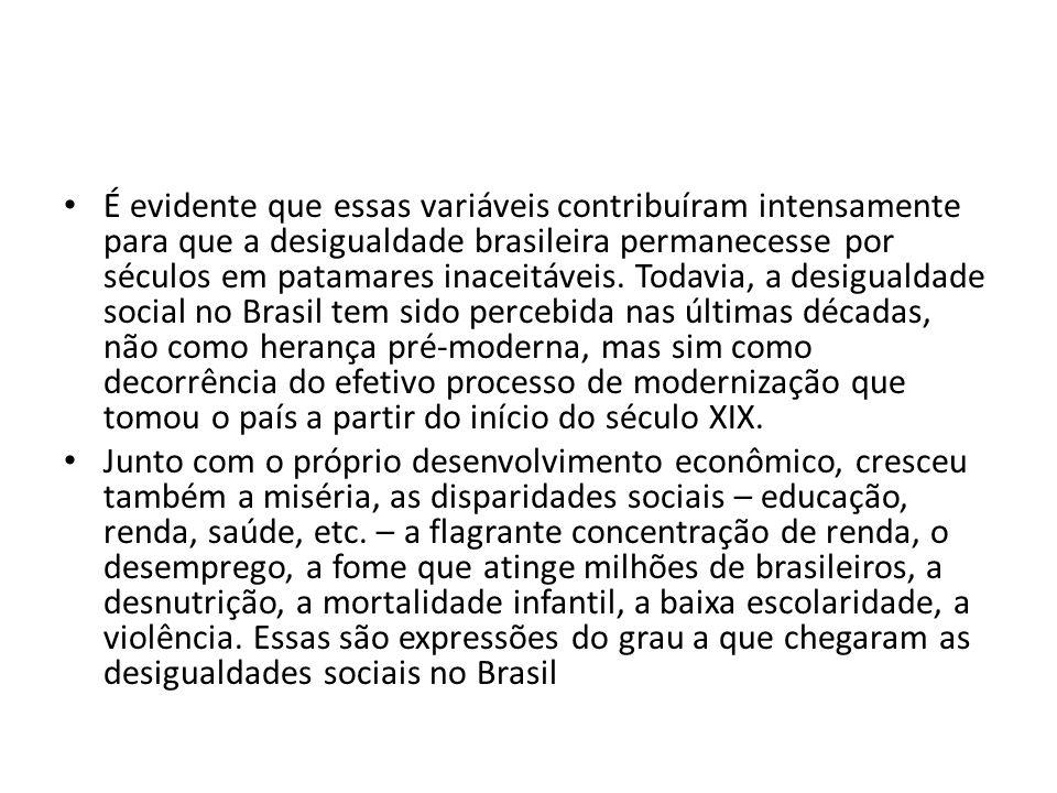 É evidente que essas variáveis contribuíram intensamente para que a desigualdade brasileira permanecesse por séculos em patamares inaceitáveis. Todavia, a desigualdade social no Brasil tem sido percebida nas últimas décadas, não como herança pré-moderna, mas sim como decorrência do efetivo processo de modernização que tomou o país a partir do início do século XIX.