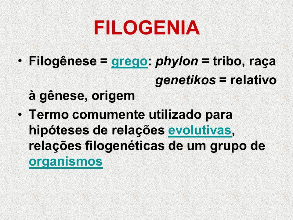 FILOGENIA Filogênese = grego: phylon = tribo, raça