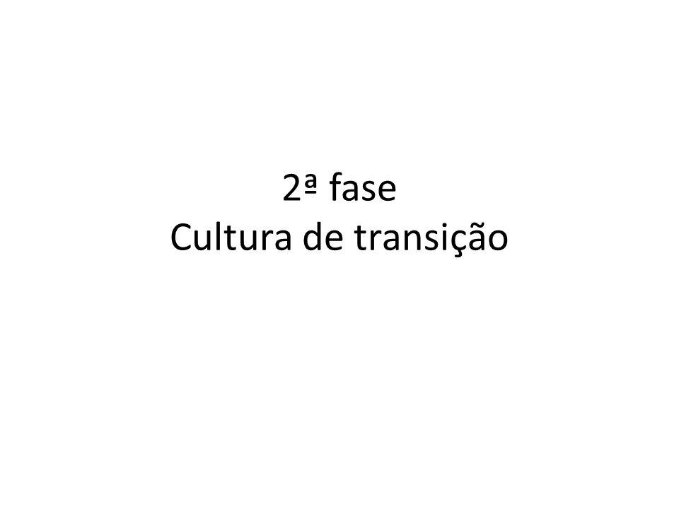 2ª fase Cultura de transição