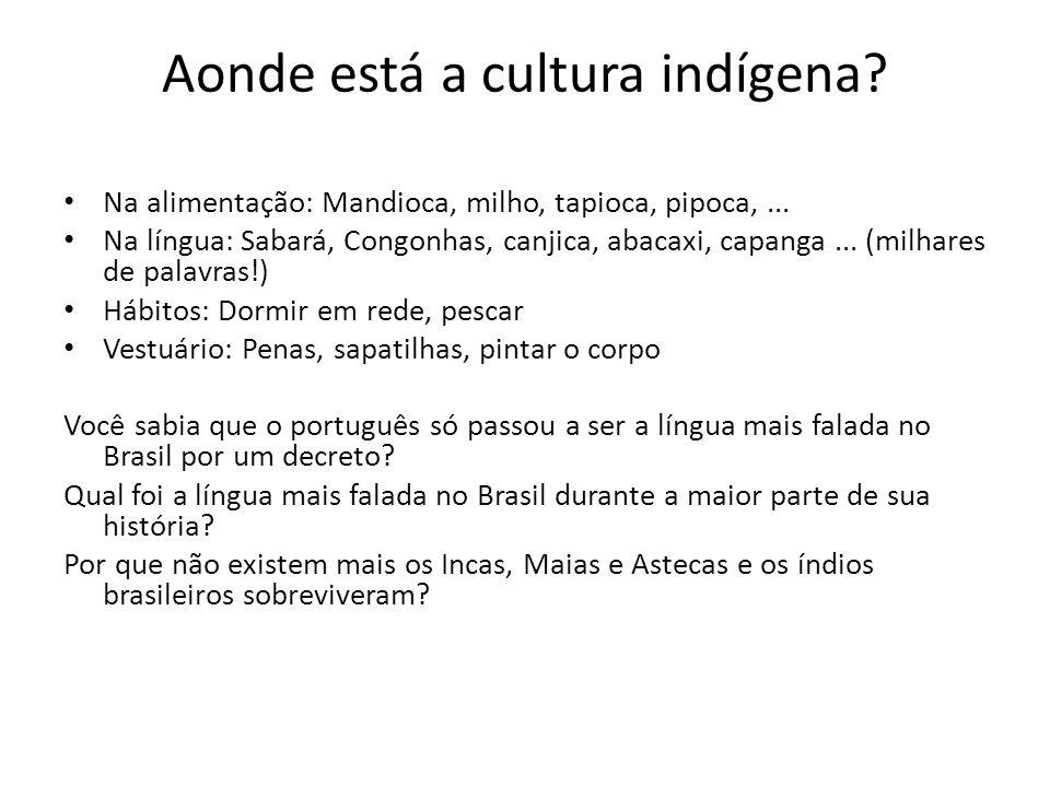 Aonde está a cultura indígena