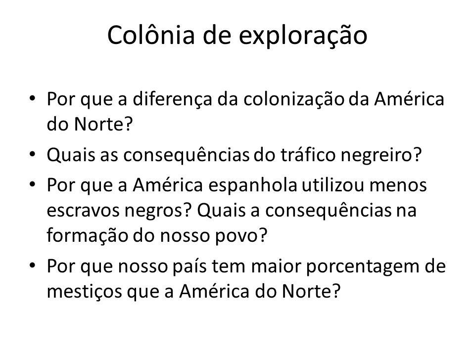 Colônia de exploração Por que a diferença da colonização da América do Norte Quais as consequências do tráfico negreiro