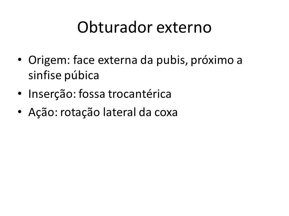 Obturador externo Origem: face externa da pubis, próximo a sinfise púbica. Inserção: fossa trocantérica.