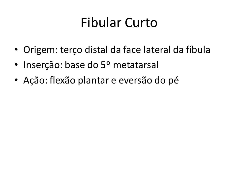 Fibular Curto Origem: terço distal da face lateral da fíbula