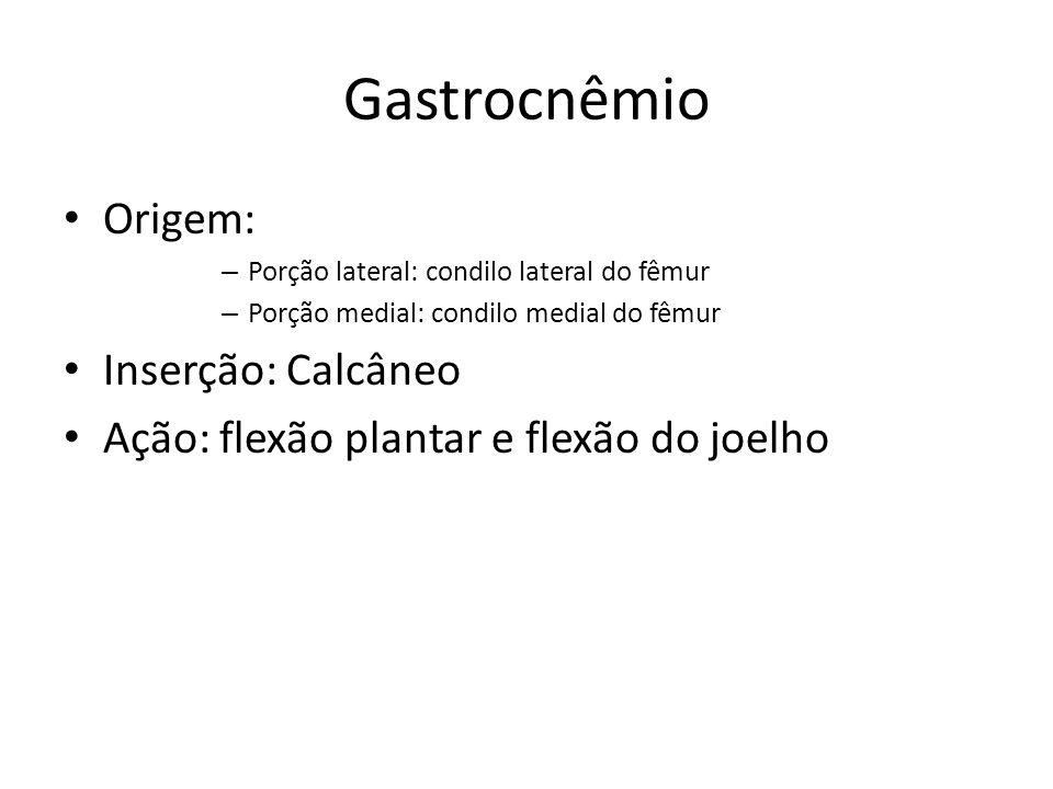 Gastrocnêmio Origem: Inserção: Calcâneo