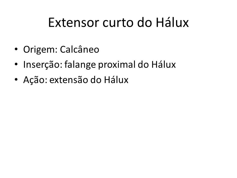 Extensor curto do Hálux