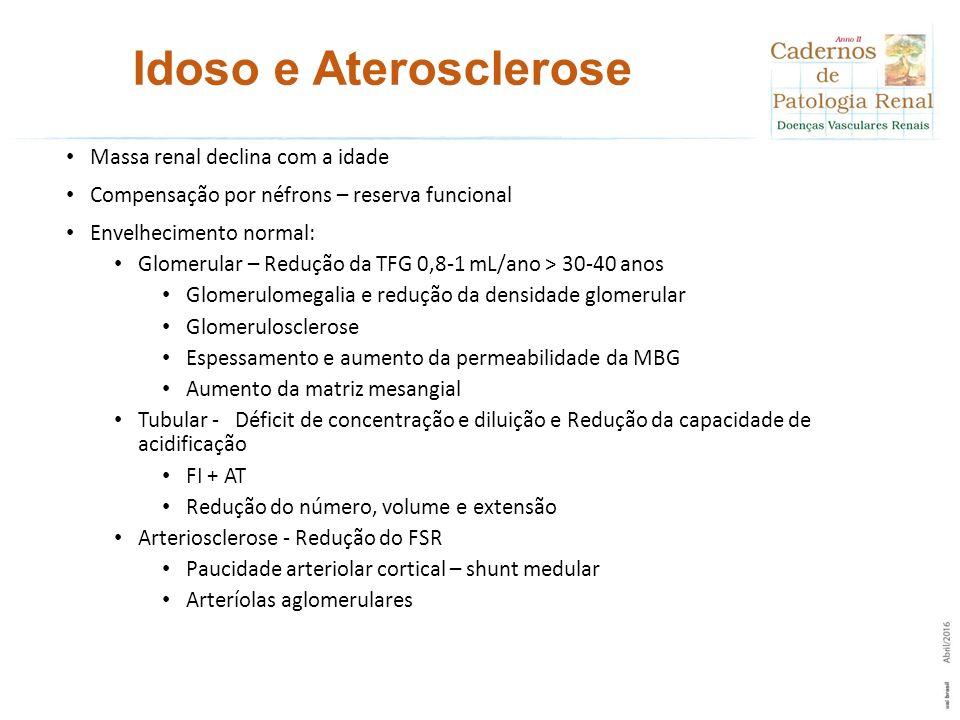 Idoso e Aterosclerose Massa renal declina com a idade