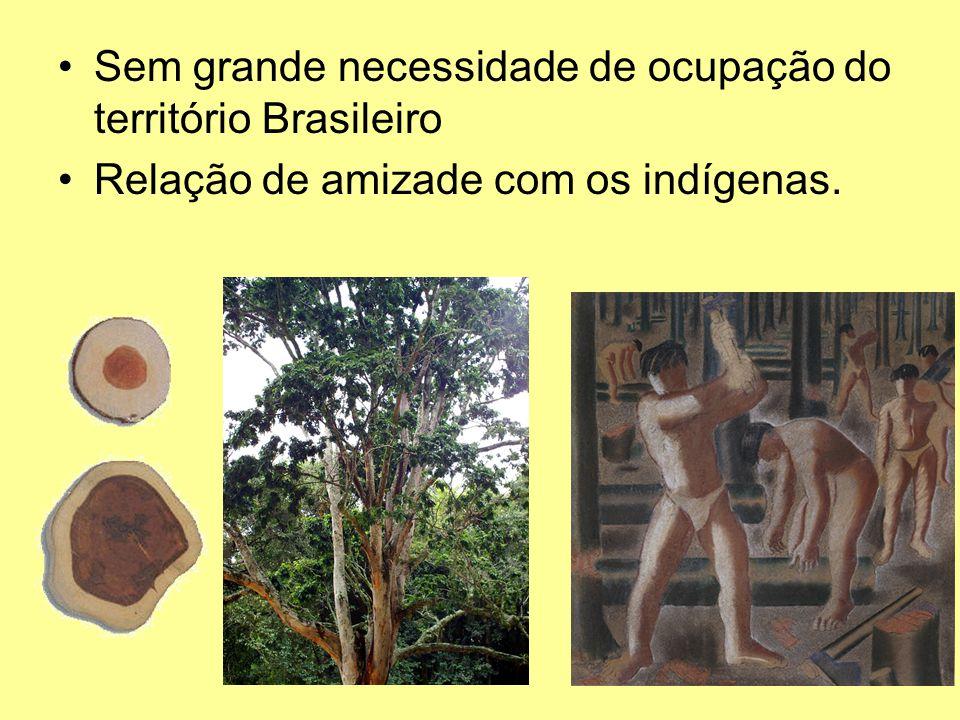 Sem grande necessidade de ocupação do território Brasileiro