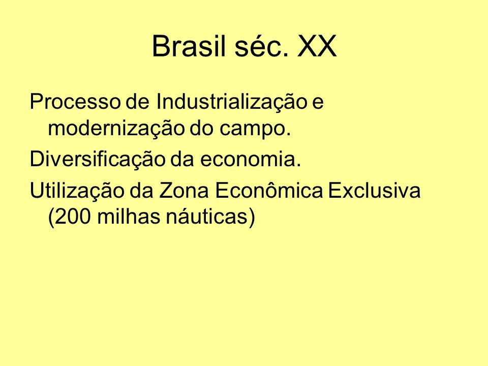 Brasil séc. XX Processo de Industrialização e modernização do campo.