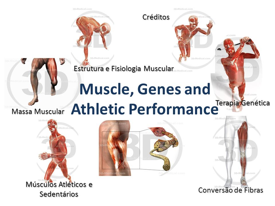 muscle genes and athletic performance essay How a woman whose muscles disappeared discovered she shared a disease with a muscle  genes were associated with elite athletic  athletic performance.