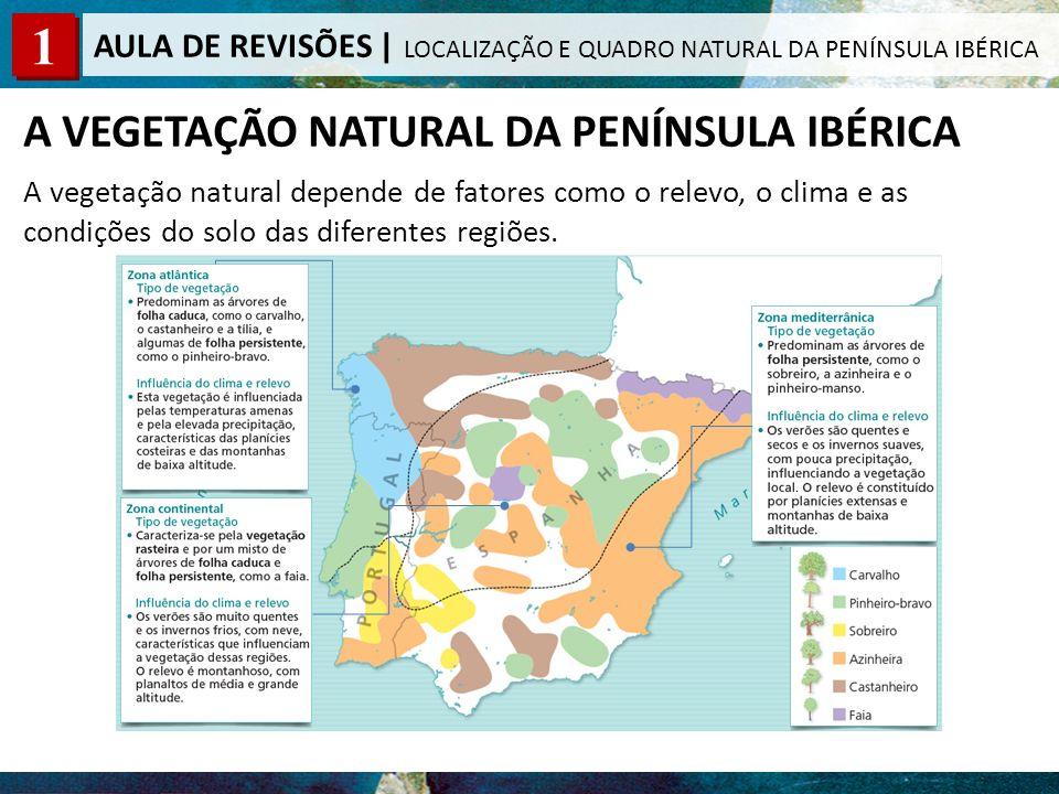 A VEGETAÇÃO NATURAL DA PENÍNSULA IBÉRICA