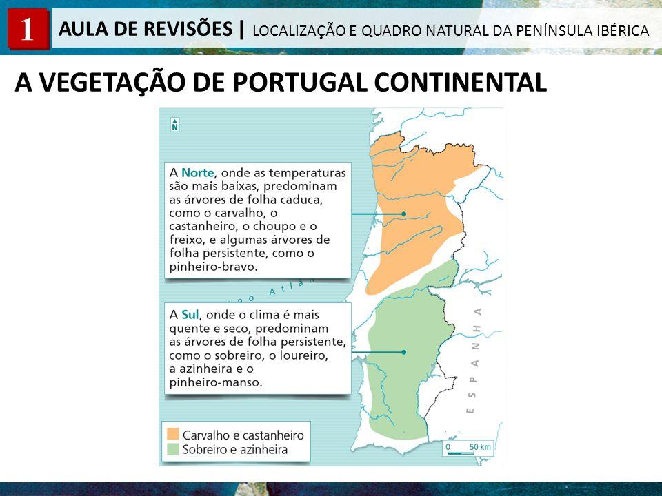 A VEGETAÇÃO DE PORTUGAL CONTINENTAL