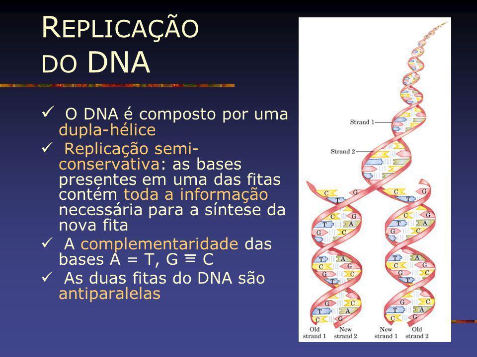 REPLICAÇÃO DO DNA O DNA é composto por uma dupla-hélice