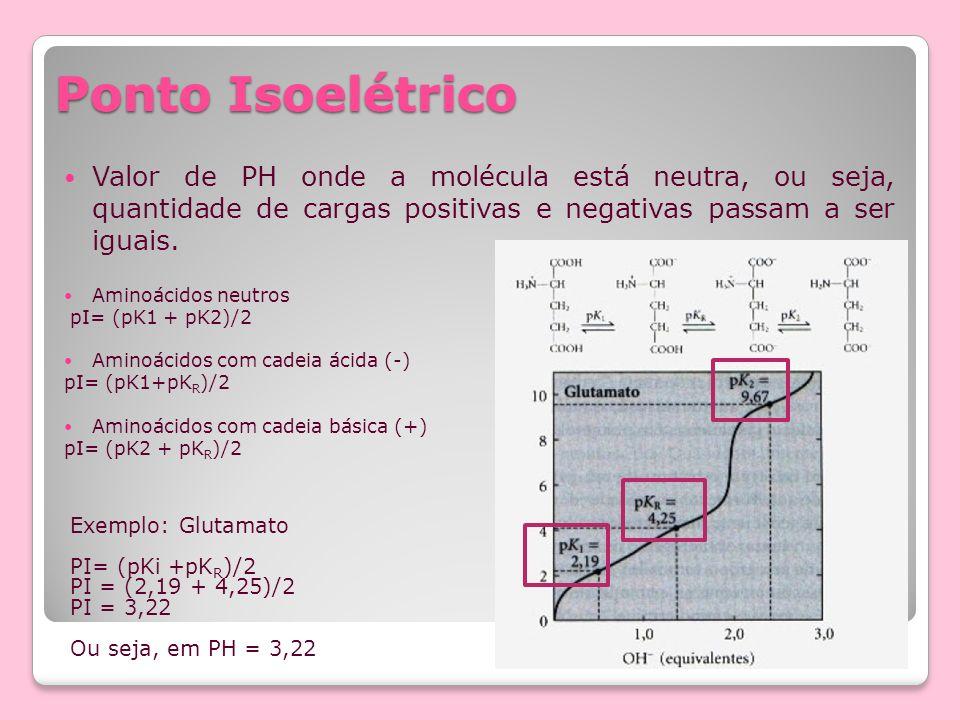 Ponto Isoelétrico Valor de PH onde a molécula está neutra, ou seja, quantidade de cargas positivas e negativas passam a ser iguais.