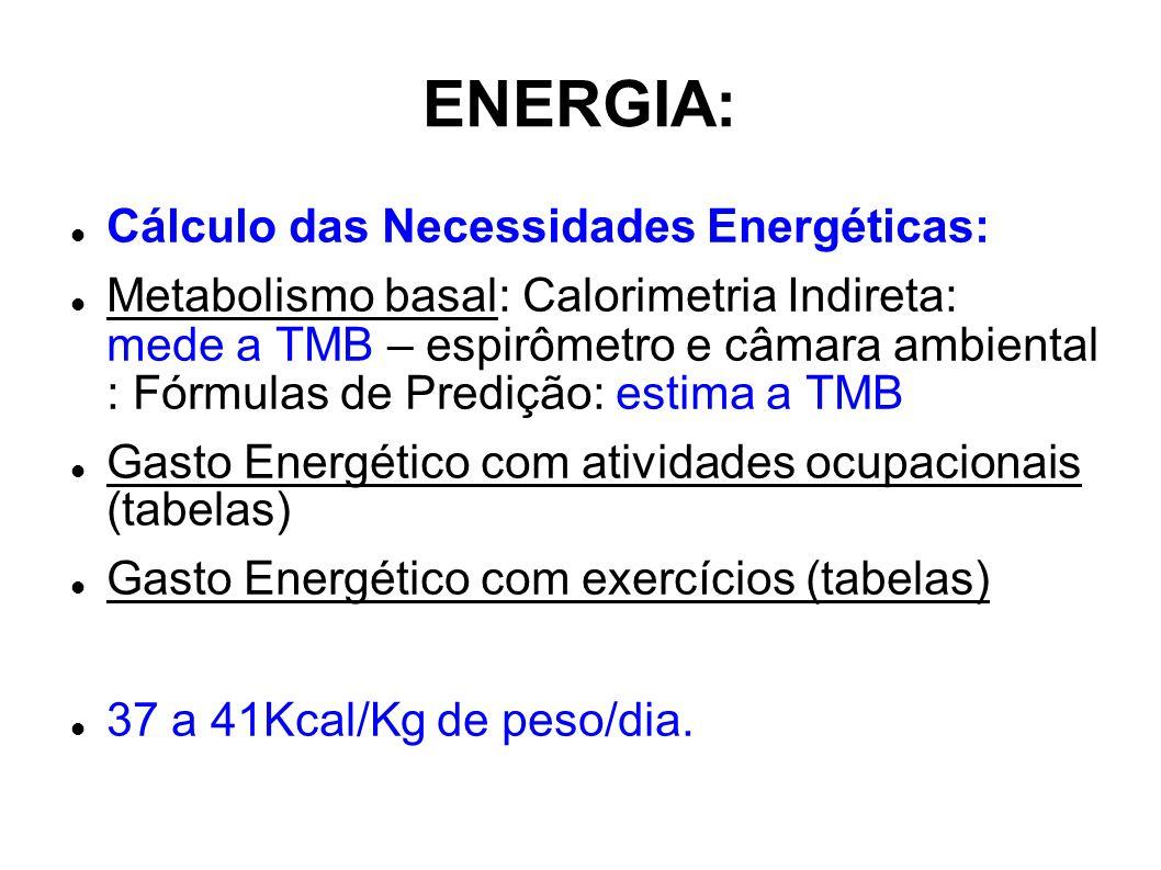 ENERGIA: Cálculo das Necessidades Energéticas: