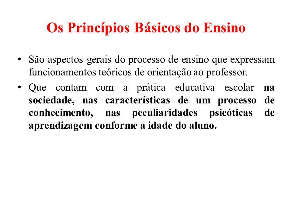 Os Princípios Básicos do Ensino