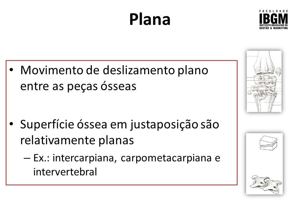 Plana Movimento de deslizamento plano entre as peças ósseas