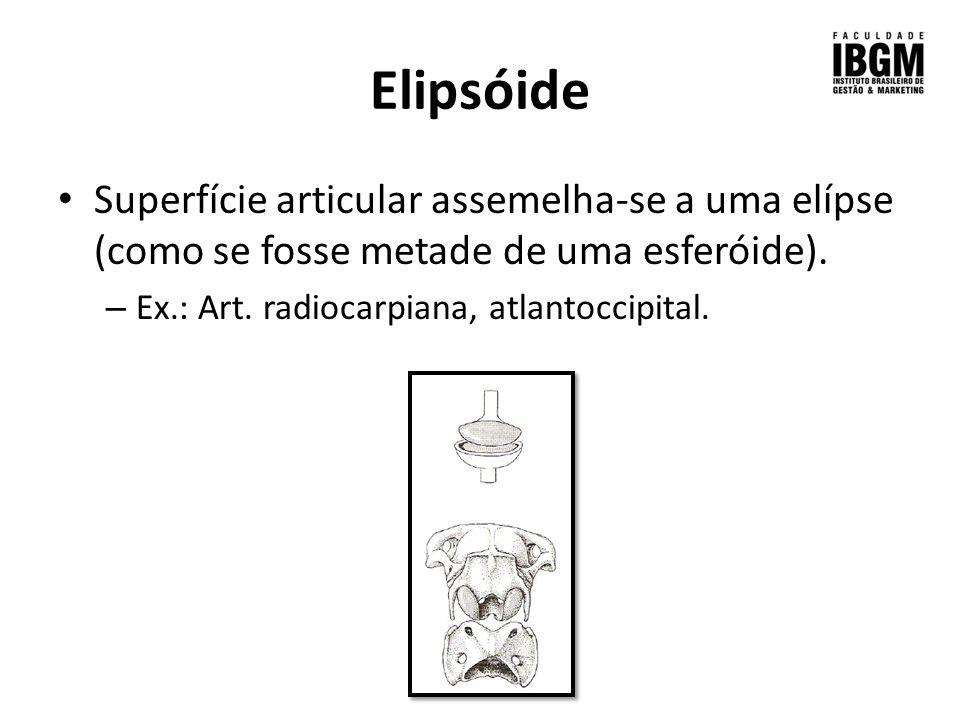 Elipsóide Superfície articular assemelha-se a uma elípse (como se fosse metade de uma esferóide).