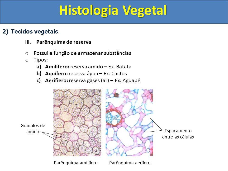 Espaçamento entre as células