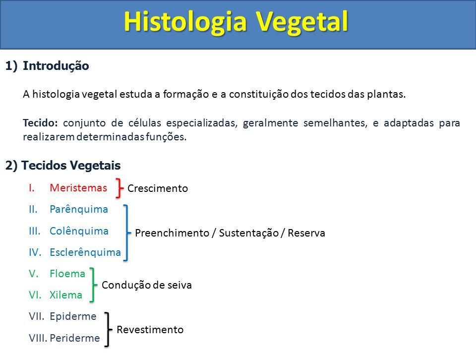 Histologia Vegetal Introdução