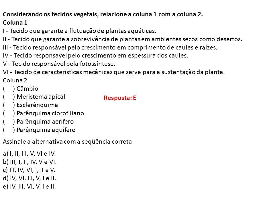 Considerando os tecidos vegetais, relacione a coluna 1 com a coluna 2