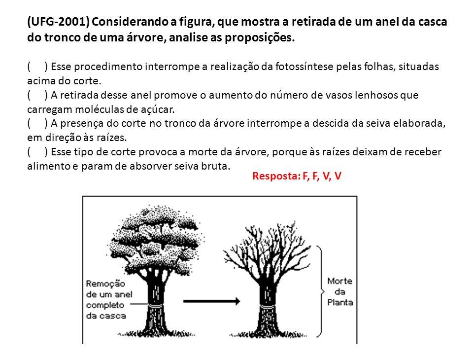 (UFG-2001) Considerando a figura, que mostra a retirada de um anel da casca do tronco de uma árvore, analise as proposições.